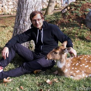 A doe! A deer! A female deer!